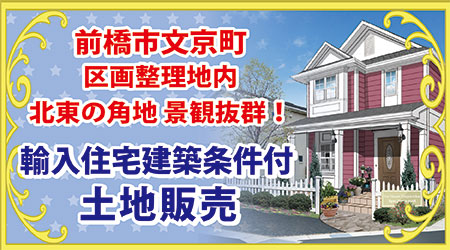 輸入住宅建築条件付土地販売