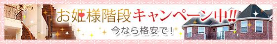 2011_02_10_s_bnner